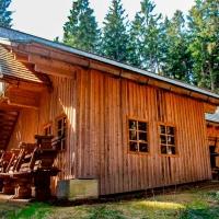 Waldglashütte (2)