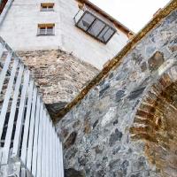 Archeonorico_Altburg (2)